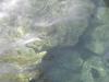 chiarefresche-e-dolci-acque