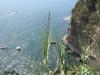 Veduta del mare dal promontorio di Cala Battaglia