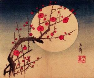 luna-haiku-e1400075248660