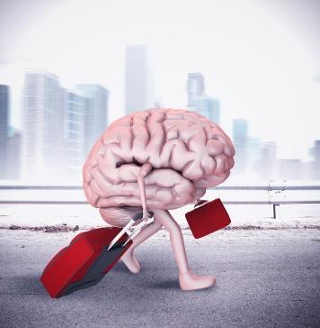 cervelli in fuga INpressMAGAZINE
